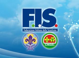big-pic-FIS